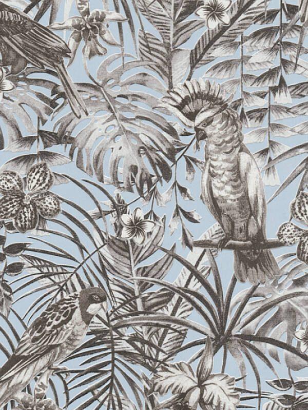 papagaji tapete za zid prodaja online