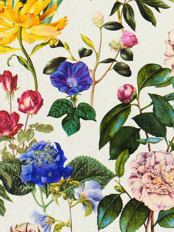 cvetne tapete, prodaja tapeta, tapete za zid